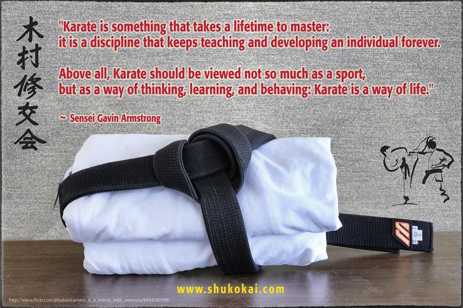 Why Karate?